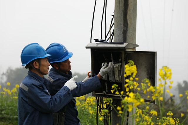 贵州赤水:电力部门党员服务队深入田间助力春耕