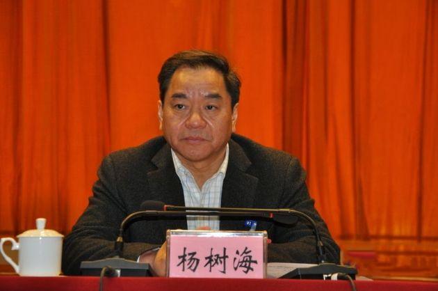 重庆市奉节县委书记杨树海: 遍访千家万户 共赴小康之路