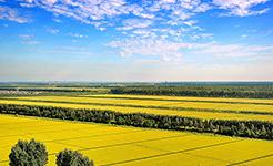 首批107个国家农产品质量安全县与贫困地区开展农产品质量安全结对帮扶
