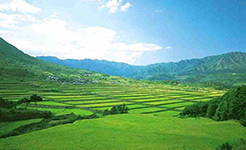 土地管理法修订 有助于稳定土地流转价格预期