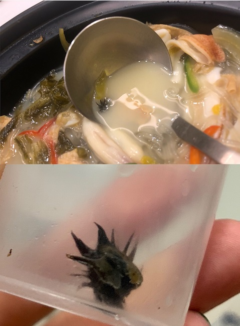 网友实名爆料!在深圳知名餐厅利宝阁吃出黑色带利刺异物