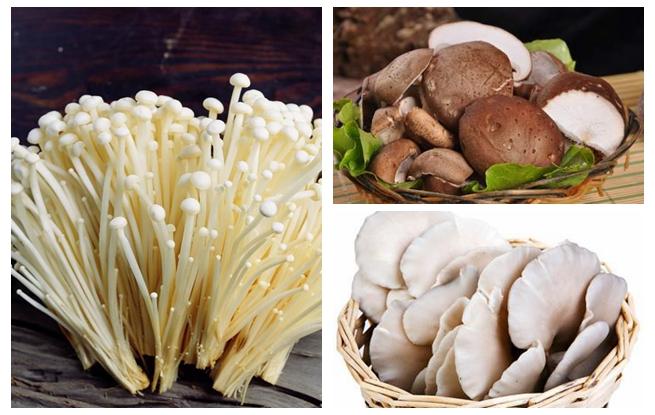 啥样的蘑菇最新鲜