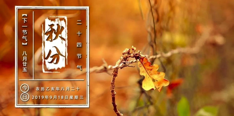 """100个""""中国农民丰收节""""乡村文化活动推选结果出炉!看看你家乡入选了吗?"""