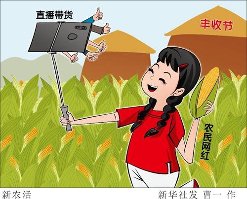 """丰收节大量网民围观农民网红带货,视频直播为啥成了""""新农活""""?"""