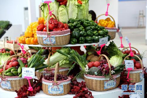 第十七届中国国际农产品交易会交易金额达381亿元