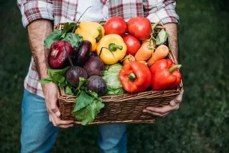 一季度主要农副产品价格持续回落